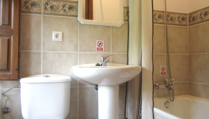 A bathroom with toilet, shower and wash basin