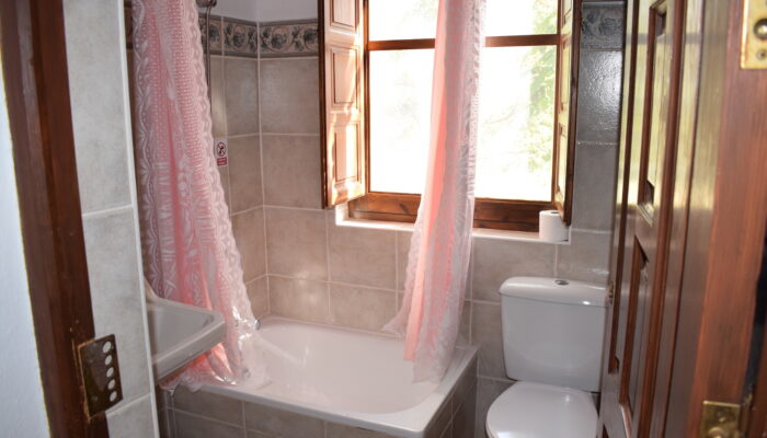 A bright bathroom with shower, toilet and wash basin