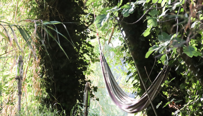 The hammock by the stream
