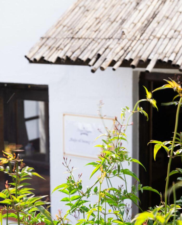 Blick durch Jasmin zum Eingang des Casa Bajo el Bosque. Die Tür steht bereits offen und du wirst erwartet.