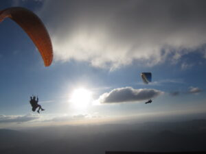 Conquer the skies with a paraglider and soar with the vultures. Algodonales, the hotspot for paragliders, awaits you.