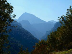 Sierra de Grazalema in the distance