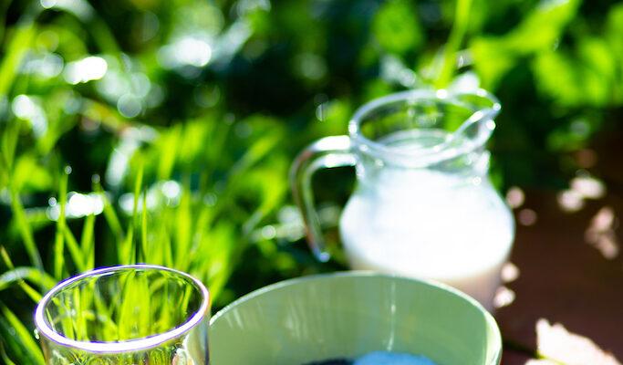 Ein liebevoll zubereitetes Müsli mit deiner Auswahl an Pflanzenmilch hilft dir beim optimalen Start in deinen Urlaubstag