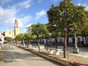 Der Hauptplatz in Algodonales mit der berühmten Kirche, gesäumt von Orangenbäumen