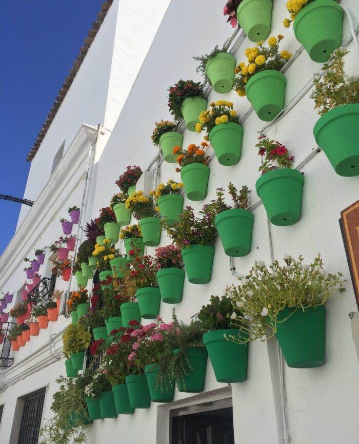 Typical view in the white village Vejer de la Frontera