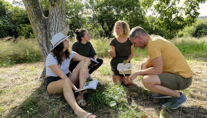 Wildkräuterwanderung auf der Finca Vegana