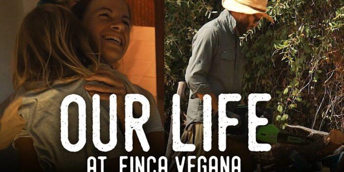 Thumbnail of Finca Diaries