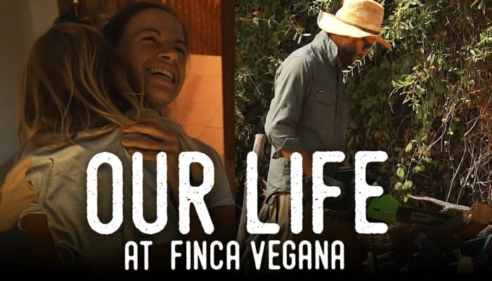 Thumbnail of Finca Diaries